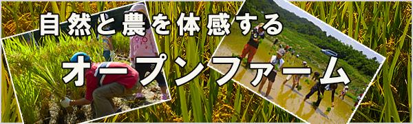 openfarm_banner_500